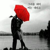 그리움이 되어 비는 내리고...