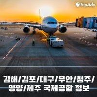 지방 국제공항 운항노선 및 정보