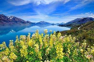 예쁜 여인과 꽃이 있는 아름다운 풍경 이미지