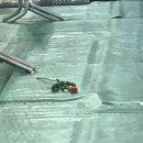 [180801_코뮤페후기] 워너원 박우진 활활.. 복근..