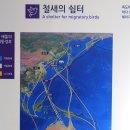 대전 아이와 가볼만한곳 과학관 독도특별전시전