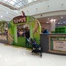 김포공항 정글대탐험 파충류, 곤충체험전 오픈!!