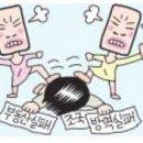 """""""끔찍한 4년"""" 친문 맘카페서 커지는 反文 목소리 '<b>82쿡</b>' 게시판에 '문재인 대통령 지지하지 않는다..."""