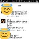 실검때문에 다시보는 김부선-이재명-주진우 SNS 언급