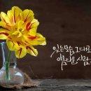 [노래추천]우울한 편지/유재하