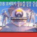 2018 오버워치 월드컵 옵드컵 일정 , 결승전 , 결과