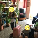 청소 도우미를 대하는 스페인 시어머니의 태도