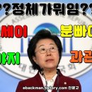 한국당 이은재 사건 사고 : 세금도둑 분빠이 야지 겐세이 패싸움 법사위태도매너제로