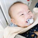 신생아 원더<b>윅스</b> 기간&증상&표&사이트 살펴보기