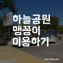 하늘공원 나들이 - 주차장, 맹꽁이차 타는 곳, 이용 요금 정보