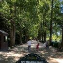 담양 메타세쿼이아 가로수길 산책, 카페 메타스토리 이용후기