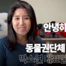 케어 박소연 대표 안락사