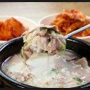 수요미식회 돼지국밥 밀양 맛집 동부식육식당