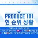 프로듀스101 시즌2 현 순위 상황 및 투표방법