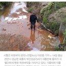 '물고기 수십마리 폐사' 천안시, 하천에 솔벤트 유출 업체 고발