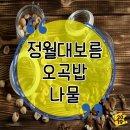 정월대보름 음식 나물 오곡밥