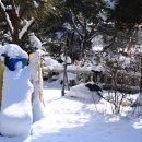 청주날씨 이곳은 눈의왕국