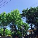오늘의 날씨, 너무 맑다