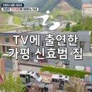 TV에 출연한 가평 신효범 집