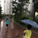 서울날씨 하늘에 구멍이! 양재천 범람~