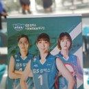 서울 장충체육관 여자 배구 GS칼텍스 KIXX 대 한국도로공사 하이패스 플레이오프...