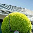 WIMBLEDON 2018 Draws. 윔블던 테니스 남녀 단식 복식 대진표