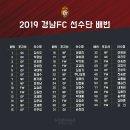 2019 경남FC 유니폼 인터넷으로 주문했습니다