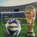 2022년 카타르 월드컵의 문제점