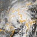 미국 합동태풍경보센터의 태풍 경로 예상은 얼마나 정확할까?
