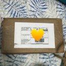 메이즈러너 그래픽노블 해외 구매한 후기