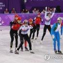 반칙해서 '실격' 당한 중국 쇼트트랙 선수들의 뻘소리 수준