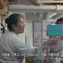 <KBS 스페셜>-길 위의 뉴요커