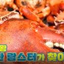 외식하는날 12회 순대국 순댓국 갈갈이 박준형 자이언트 랍스터 맛집