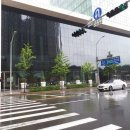 네이버 도서관, 대기업의 멋짐을 새삼 느낀 서울 근교 나들이 1편
