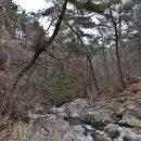 지리산과 전유성-서수남의마이라이프
