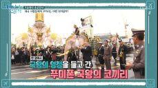 국왕의 영정을 들고 가는 태국의 코끼리