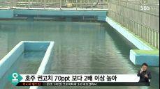 대구 수돗물, 과불화화합물 다량 검출..서울 5배 이상