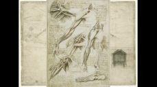 레오나르도 다빈치의 생애와 작품